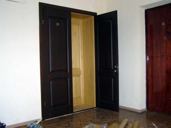 Двойная дверь в квартиру