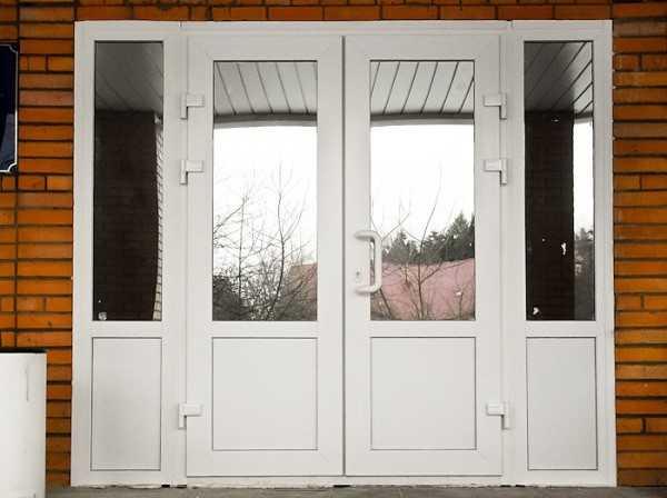 двери входные для магазина со стеклом