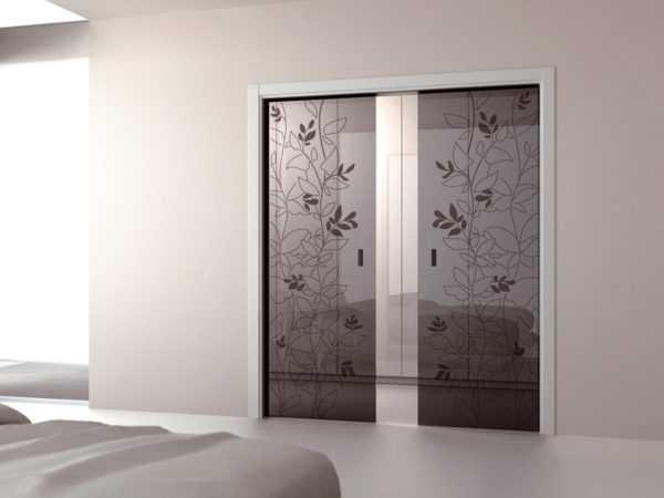 Двустворчатые двери купе для квартиры с одним стеклом